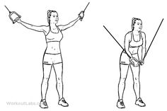 Standing Cable Crossover / Fly   Illustrated Exercise guide - WorkoutLabs 2 x 8-12