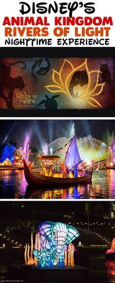 Animal Kingdom's new Rivers of Light nighttime experience brings the beauty of nature to life with color changing floats, fountains, water screens, music, and much more. #DisneySMMC