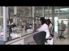 Microencapsulación como técnica de inclusión de bacterias probióticas en sistemas alimentarios ácidos   Food News Latam
