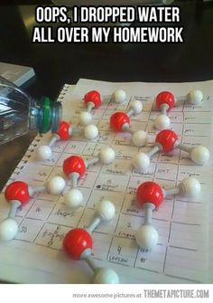 """Oops, I just dropped water all over my homework"" 