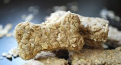 Quick and Easy Dog Biscuit Recipe - Proud Dog Mom