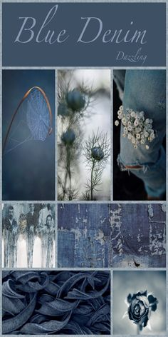 Love all shades of blue. Colour Schemes, Color Trends, Color Combos, Color Patterns, Pattern Ideas, Pattern Designs, Print Patterns, Theme Nature, Color Collage