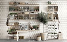 String shelving system in oak and white - the deli version