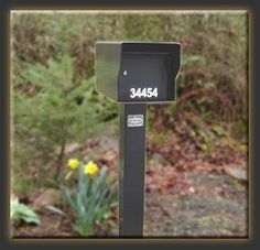 """Fort Knox Mailbox LG Standard B Large Standard Mailbox - Black by Fort Knox Mailbox. Save 26 Off!. $297.00. Here are the mailboxes that started it all! These not so """"Standard"""" mailboxes can be distinguished from our other mailboxes because they have only one lockable bottom door with an above open incoming mail slot. These mailboxes can be ordered as a """"Single Service"""" mailbox, or you can add outgoing mail capability. When the outgoing mail option (which includes a flag) is added, mail is…"""