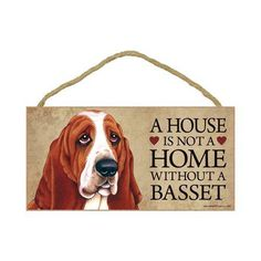 Basset hounds...you either love them or you don't! <3