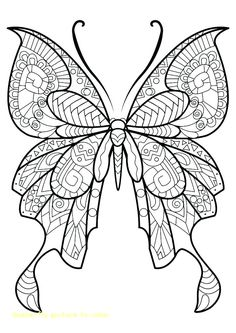 46 Best Coloring Pages Images Coloring Pages Leaded Glass Windows