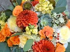 Image result for fall succulents