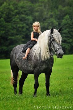 Pretty chubby dark Dapple grey horse w/ white mane & tale & dark legs with a cute little girl in a black dress riding him bareback. Such a pretty horse and picture! Lush green field of grass! Cute Horses, Horse Love, Horse Girl, Gray Horse, All The Pretty Horses, Beautiful Horses, Animals Beautiful, Animals For Kids, Cute Animals
