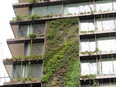 Sydney. Il giardino è in verticale. Per 16 piani