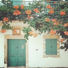 Isn't this so pretty???? A little Tuesday beauty  @corinanika