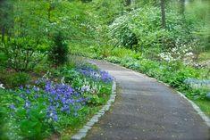 Wife, Mother, Gardener: Chanticleer ~ Bell's Run Creek in April
