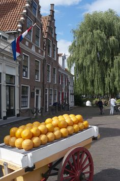 A day trip to Volendam and Edam by bike from Amsterdam is a perfect way to enjoy the quaintness of the Dutch countryside.  #Travel #Netherlands #Europe