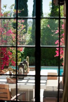 Views out the window- greenery, flowers, water