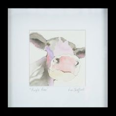 Purple rose – Lou Stafford. cow. watercolour. painting. Scotland. isle of bute. animal.