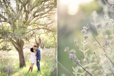 Tia Mowry's engagement photos by Jose Villa. Love the natural light in these.