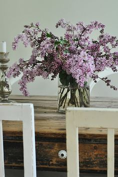 lilacs. <--stunning