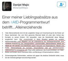 #noAfD #programmentwurf #alleinerziehende
