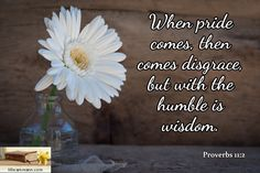 Proverbs 11:2 / When pride comes, then comes disgrace, but with the humble is wisdom.