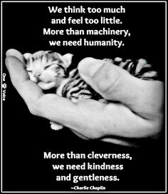 HUMANITY~
