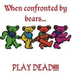 😁😁😁 Grateful Dead Quotes, Grateful Dead Image, Grateful Dead Poster, Grateful Dead Dancing Bears, Grateful Dead Wallpaper, Dead Images, Hippie Quotes, Dead And Company, Forever Grateful