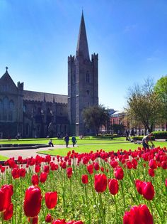 If in Dublin, don't miss a visit to the gorgeous St. Patrick's Cathedral.