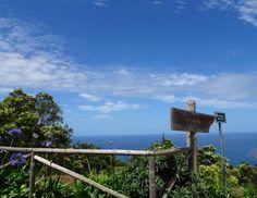 Atemberaubende Küstenblicke sind inklusive ...