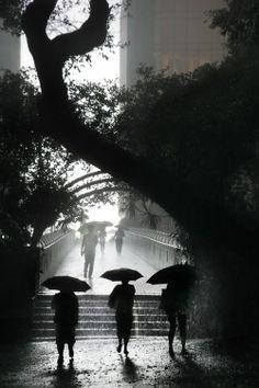 Christophe Jacrot  Dagmar Wilde Board-  Let it Rain