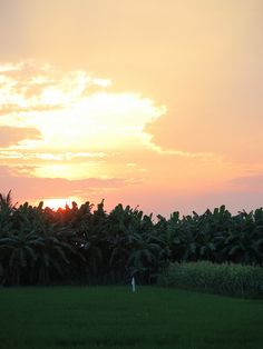 Vietnam Vietnam Country, Trip Planning, Planning Board, Top 10 Destinations, Vietnam History, Vietnam Travel, Southeast Asia, Beautiful World, Trip Advisor