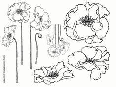 14,75 1/2 unmounted sheet Poppies of pleasant poppies van stampin up