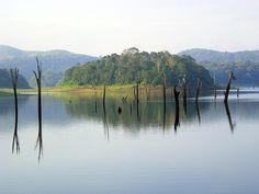Periyar National Park in Southern India. We didn't see many animals but it was a nice day. It was very hot indeed!