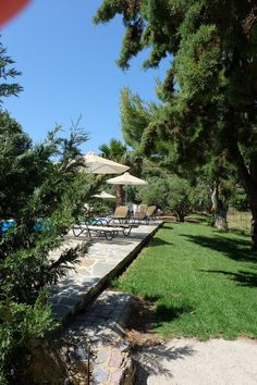 Hotel Pool, Double Room, Cozy Room, Garden Pool, Crete, Greenery, Swimming Pools, Dolores Park, Studios