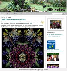 Gardening Blogs, Mandala, Bloom, Politics, Cool Stuff, Day, Inspiration, Cool Things, Political Books