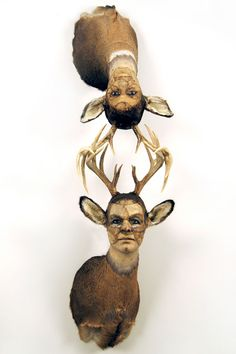 Artist: Kate Clark  Title: It Depends  Medium: Deer hide, antlers, clay, foam, thread, pins, rubber eyes  Size: 72 x 19 x 19.5 inches  Year: 2009