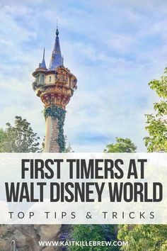 Make the Most of Your First Trip to Walt Disney World with these Six Quick Tips for First Timers! - Make the Most of Your First Trip to Walt Disney World with these Six Quick Tips for First Timers! top tips and tricks Disney World Resorts, Disney World Vacation Planning, Disney World Food, Disney World Parks, Disney Planning, Disney Vacations, Vacation Ideas, Disney Worlds, Vacation Spots