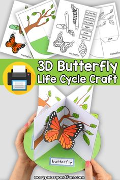 Life Cycle of a Butterfly Craft – Easy Peasy and Fun Membership Toddler Arts And Crafts, Spring Crafts For Kids, Diy For Kids, Crafts To Do, Easy Crafts, Paper Crafts, Life Cycle Craft, Kindergarten Art Projects, Butterfly Life Cycle