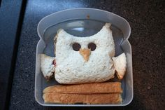 """Owl Sandwich. Chocolate chip eyes and crust beak and """"branch"""". So cute!"""