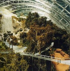 Eden Project in Cornwall. Inside the artificial biodomes are plants that are collected from all around the world.
