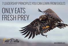 Be very careful about what you feed your mind.  Like eagles, eat only fresh prey.