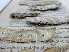 just a few seeds (detail). altered book by Ines Seidel
