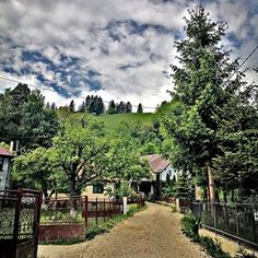 The road to the manor Bran Castle Romania, Country Roads, Mansions, Spring, Summer, Outdoor, Instagram, Outdoors, Summer Time