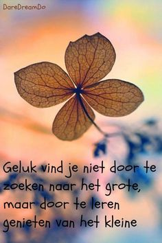 Motivational Quotes For Success Mantra, Words Quotes, Life Quotes, Sayings, Dutch Words, Motivational Quotes, Inspirational Quotes, Dutch Quotes, Thing 1