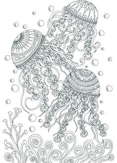 Treasures In The Ocean Jelly Fish Adult Coloring Pages By Joenay Inspirations