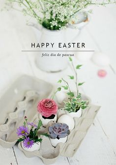 Feliz Dia de Pascua