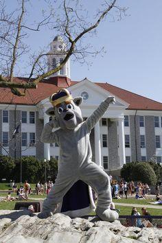 jmu [iloveyou]. Duke Game, James Madison University, Dream School, Her Campus, All Things Purple, When I Grow Up, School Spirit, College Life, School Days