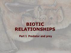 Biotic relationships - Part 1 Predator and prey by Dagmar De Greef via slideshare