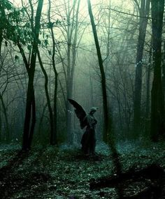 Forest Angel... Located at the Ozarks in Missouri. (Horrific Finds, Facebook)