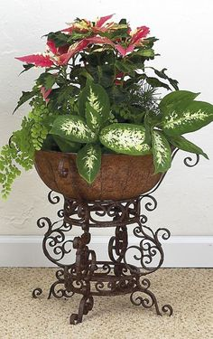 Ornate Planters - Large | Charleston Gardens® - Home and Garden Collection Classic outdoor and garden furnishings, urns & planters and garde...