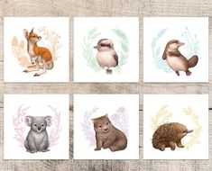 Baby Shower Decorations For Boys Animals Nursery Themes 59 Ideas Baby Wall Art, Nursery Wall Art, Nursery Decor, Australian Nursery, Australian Animals, Illustration Inspiration, Baby Animal Nursery, Echidna, Nursery Themes