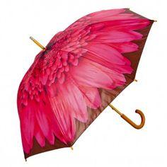 Kitch Kitchen Paraplu
