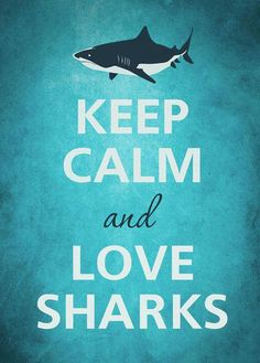 Keep calm? C'mon guys I can't keep calm about loving sharks! #SharksAreAwesome!